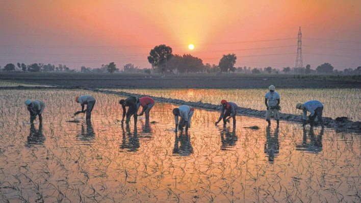 a rural recovery is critical to the overall revival of india's economy