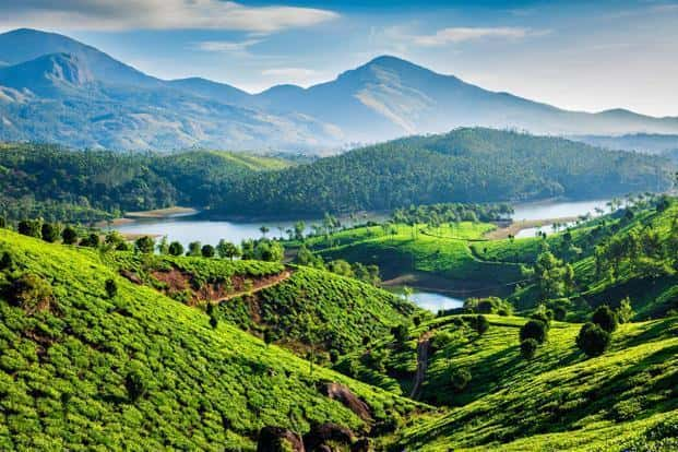 Munnar, Kerala, best place to visit in India during summer