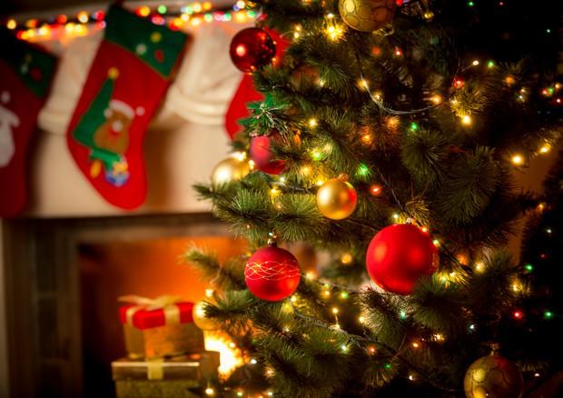 Natale in cucina: viaggio catartico alla scoperta dei sapori ...