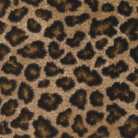 Shop STAINMASTER Leopard Nylon Fashion Forward Carpet