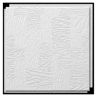 "Shop Armstrong 12"" x 12"" HomeStyle Glenwood Ceiling Tile ..."