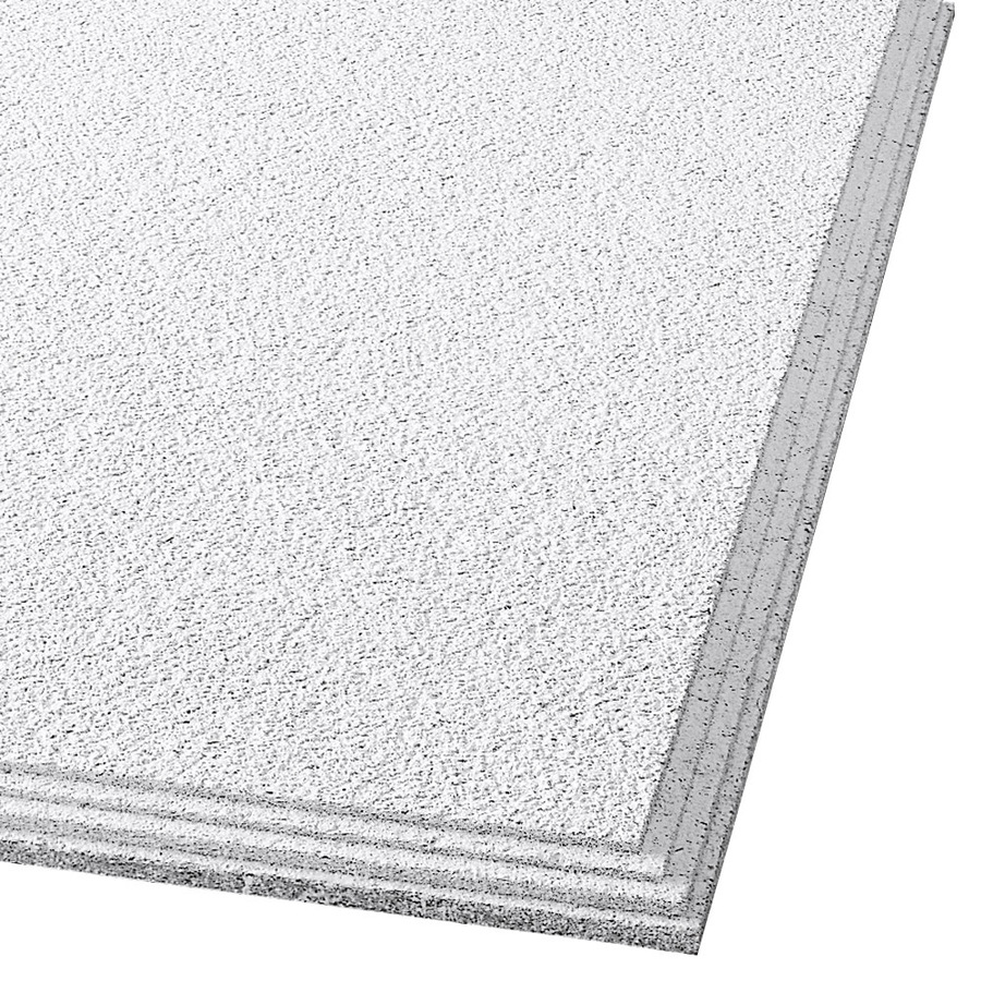 Shop Armstrong 24 x 24 Cirrus Ceiling Tile Panel at