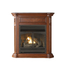 Shop Cedar Ridge Hearth 43.75-in Dual-Burner Vent-Free ...