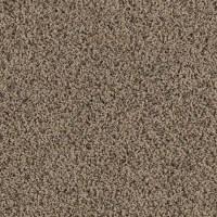 Shop SmartStrand Lichfield Solid Berber Indoor Carpet at