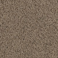 Shop SmartStrand Lichfield Solid Berber Indoor Carpet at ...