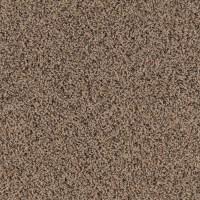 Shop SmartStrand Marshfield Solid Berber Indoor Carpet at ...
