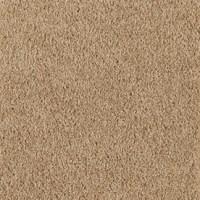 Light Brown Carpet Texture - Carpet Vidalondon