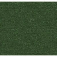 Shop Lighthouse Spring Green Indoor/Outdoor Carpet at ...