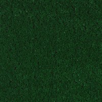 Shop Coronet Bonanza Ivy Green Textured Indoor/Outdoor ...