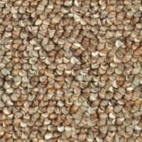 Shop Coronet Astonish Cinnamon Berber Indoor Carpet at ...