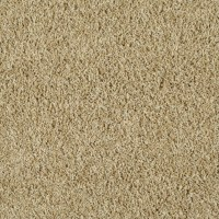Shop STAINMASTER Active Family Near and Dear Calico Beige ...