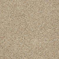 Stainmaster carpet - Lookup BeforeBuying