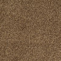 Shop STAINMASTER Trusoft Peaceful Mood II Cocoa Pecan ...
