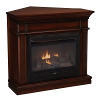Shop Cedar Ridge Hearth 42-in Dual-Burner Vent-Free Auburn ...