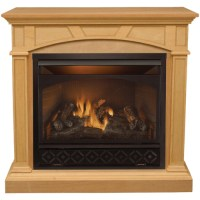 ProCom Compact & Vent Free Gas Fireplace from Lowes ...