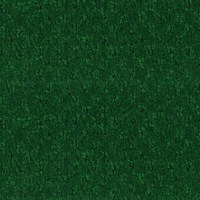 Shop Sundance Forest Green Indoor/Outdoor Carpet at Lowes.com