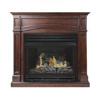 Shop Pleasant Hearth 45.875-in Dual-Burner Vent-Free ...