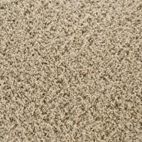 Snmaster Carpet Reviews Lowes - Carpet Vidalondon