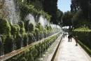 Courte histoire de jardin (2)
