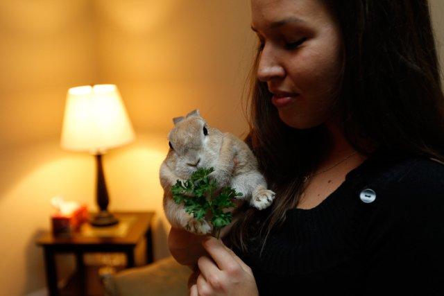 Véronique Pelchat a adopté Gaelle comme animal de... (Photo Martin Chamberland, La Presse)