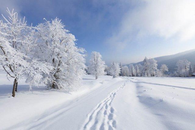 Dans notre pays d'hiver, l'allergie au froid est... (Photo: archives La Presse)