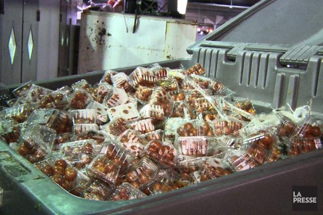 Un conteneur du marché Jean-Talon rempli de casseaux... (Photo Ninon Pednault, La Presse)