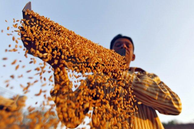 Selon le rapport, les coûts économiques directs du... (PHOTO AMIT DAVE, ARCHIVES REUTERS)
