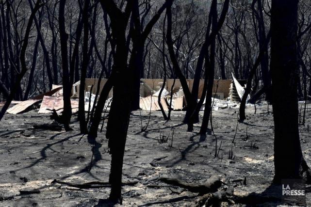 Dévastation dans les Blue Mountains près du Mont... (Photo AFP)