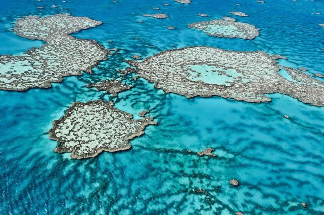 Vue des airs de la Grande barrière de... (PHOTO ARCHIVES AGENCE FRANCE-PRESSE)