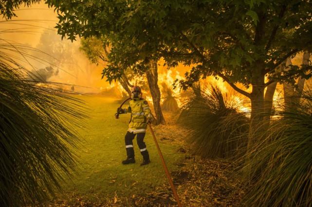 Il y a souvent des feux de forêts... (ARCHIVES REUTERS)