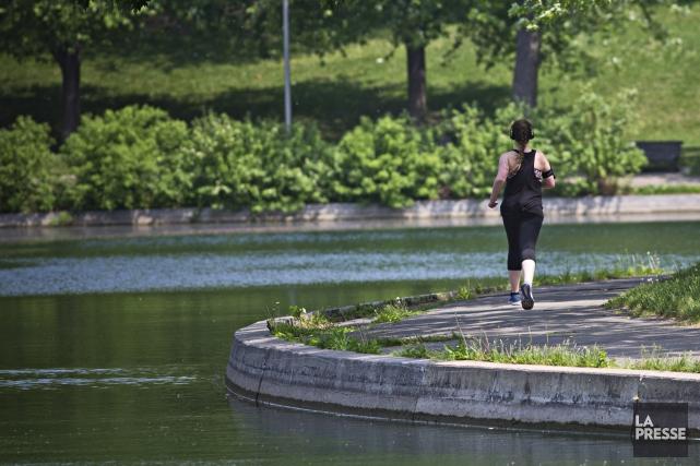 Le parc Lafontaine, à Montréal.... (PHOTO PATRICK SANFAÇON LA PRESSE)