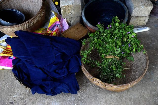 L'indigo est utilisé comme colorant sous sa forme... (HOANG DINH NAM, ARCHIVES AFP)