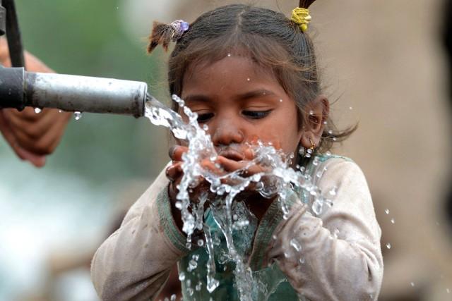 Face aux changements climatiques et à la pression... (PHOTO AFP)