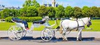 Urlaub buchen: Pauschalreisen & Reiseangebote | L'TUR