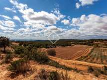 Large Country Estate In Requena Valencia