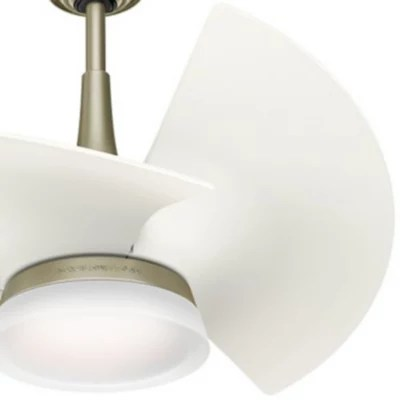 Orchid Ceiling Fan by Casablanca Fan Company at Lumens