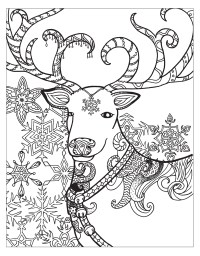 Zendoodle Coloring: Winter Wonderland | Jodi Best | Macmillan