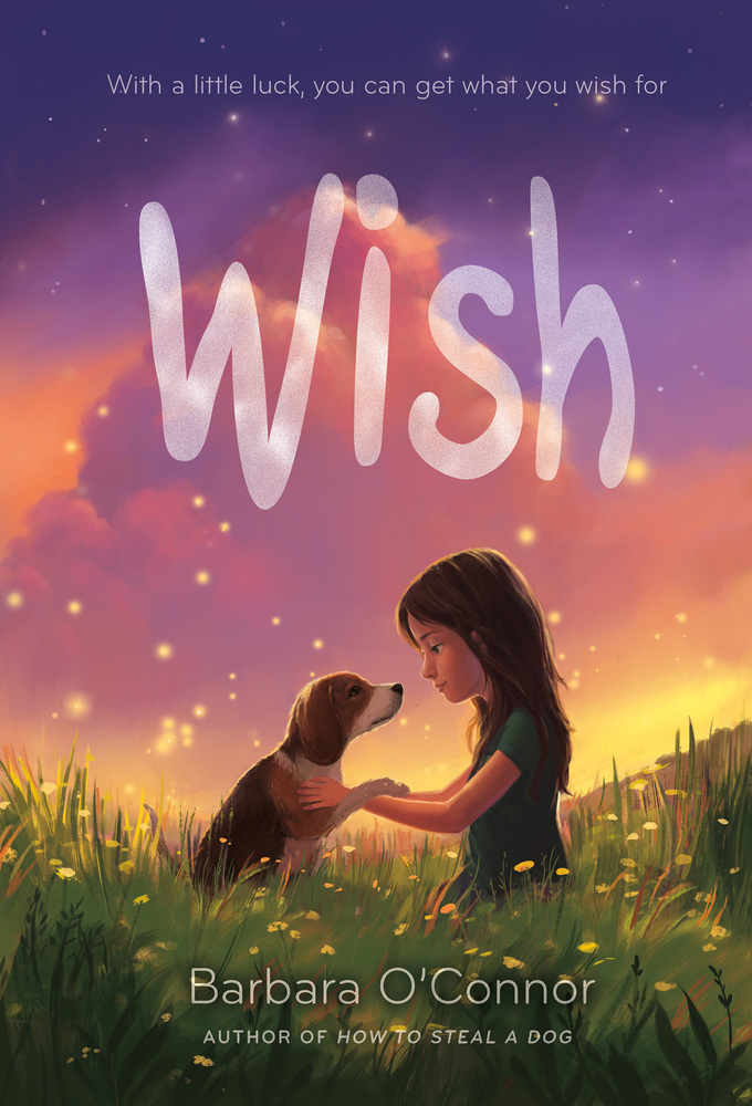 Image result for wish barbara o'connor