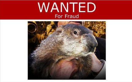 Hog wanted