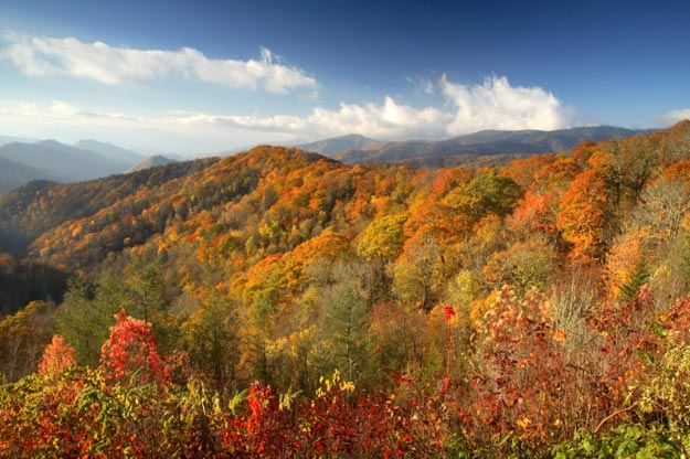 Fall Wallpapers For Desktop Idaho Great Smoky Mountains National Park Usa Map Facts