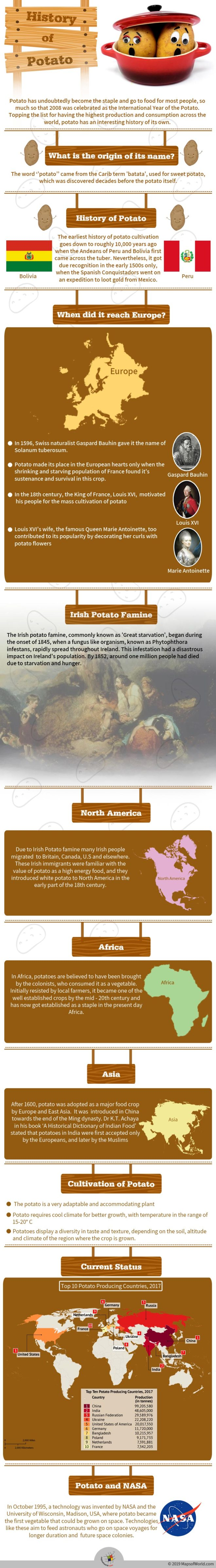 Infographic Showing The History of Potato