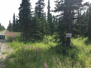 Photo of Lot 3 Clammers Haven Drive, Clam Gulch, AK 99568 (MLS # 19-12262)