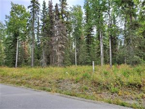Photo of 202 Bighorn Circle, Kenai, AK 99611 (MLS # 19-15325)