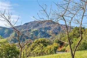 Tiny photo for 4050 Lake County Highway, Calistoga, CA 94515 (MLS # 21907725)
