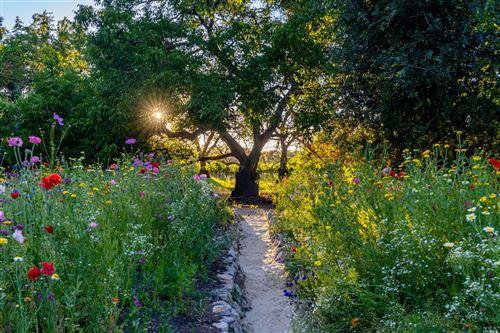Tiny photo for 3226 Silverado N Trail, Saint Helena, CA 94574 (MLS # 321053758)