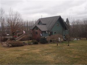 Photo of 42 FORD HILL ROAD, WHITNEY POINT, NY 13862 (MLS # 219311)