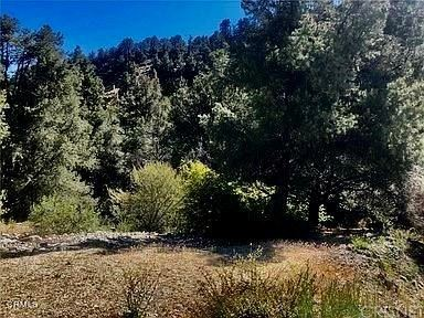 Photo of 2100 Glacier Drive, Frazier Park, CA 93225 (MLS # V1-5095)