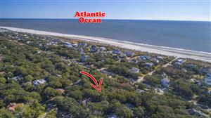 Photo of 2 Conch Court, Isle of Palms, SC 29451 (MLS # 19000991)
