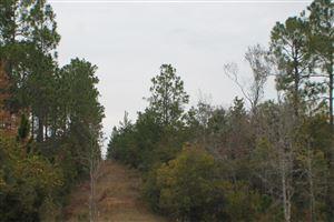 Photo of XXX 80 Acres, Defuniak Springs, FL 32433 (MLS # 835299)