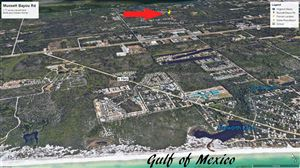 Photo of 000 Mussett Bayou Road, Santa Rosa Beach, FL 32459 (MLS # 831587)